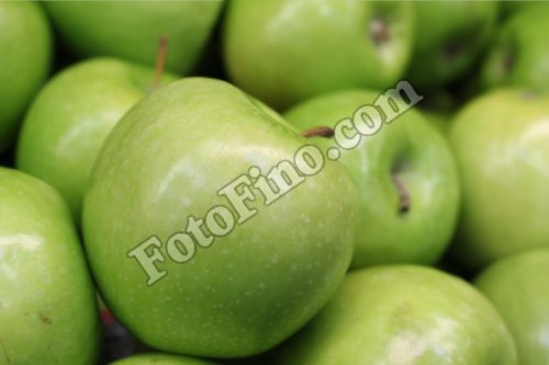 Green Apple - FotoFino.com
