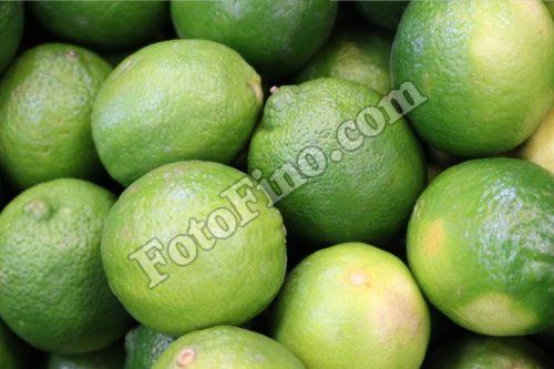 Limes - FotoFino.com