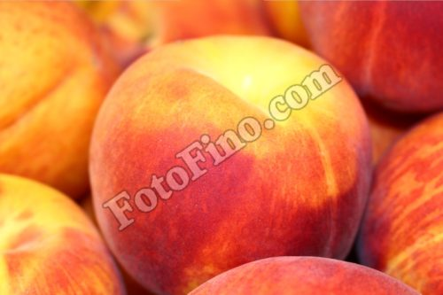 Peaches - FotoFino.com
