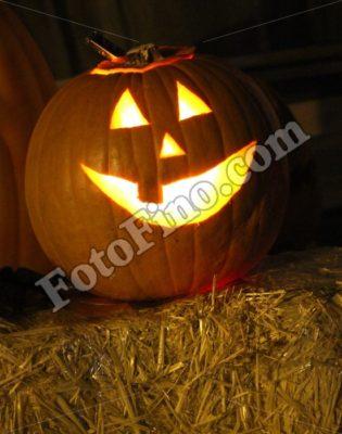 Pumkin Lantern - FotoFino.com