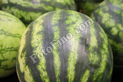Watermelons - FotoFino.com