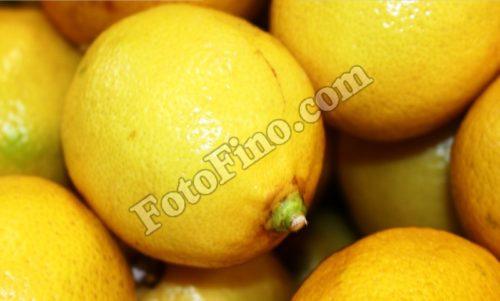 Lemons - FotoFino.com