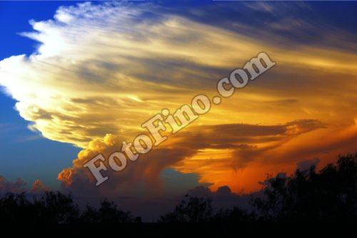 Orange Sunset - FotoFino.com