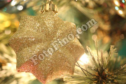 Gold Sparkly Ornament - FotoFino.com
