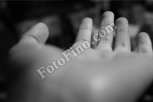 Hand in B&W - FotoFino.com