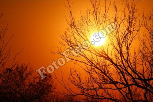 Dark Orange Sunset - FotoFino.com