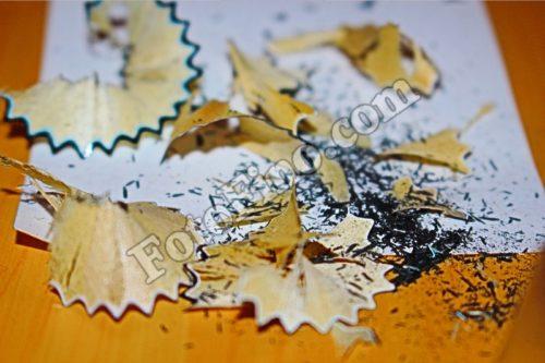 Pencil Shavings - FotoFino.com